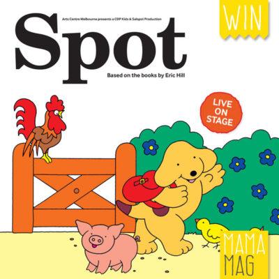 Spot_WIN